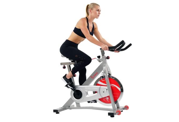 sunny health & fitness pro