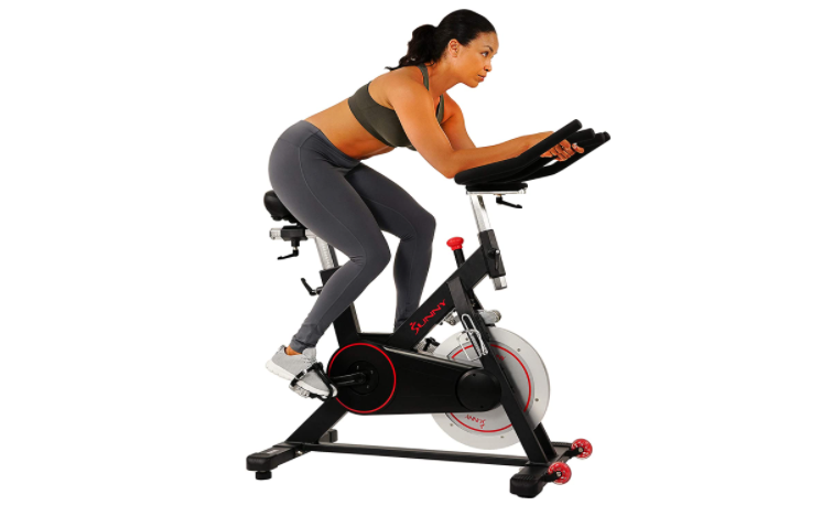 sunny health and fitness bike