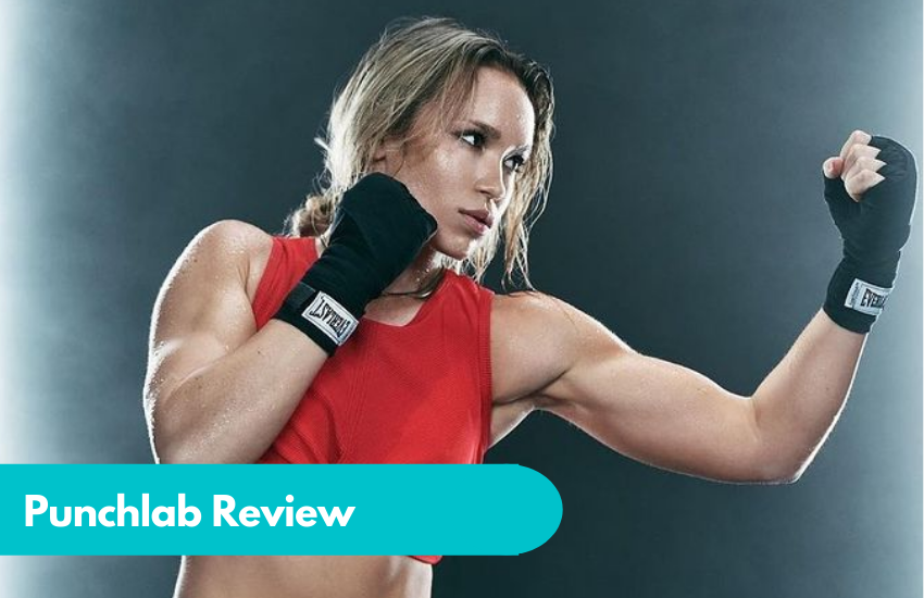 Punchlab Review