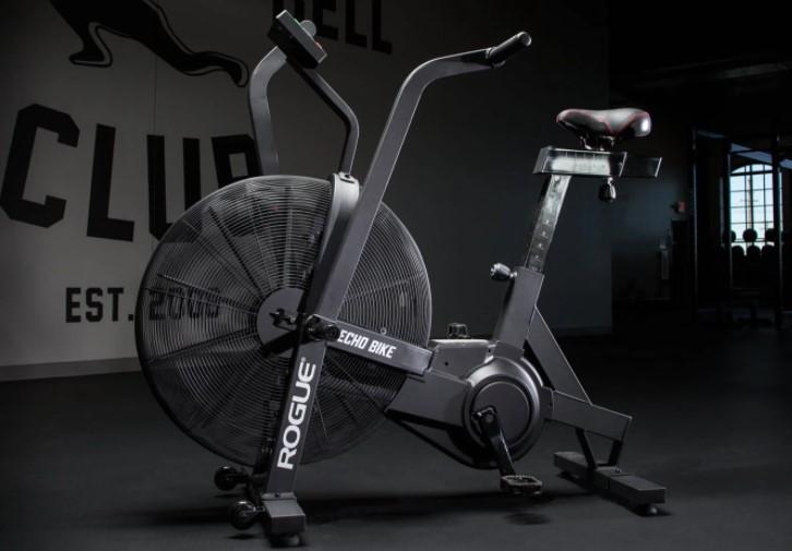 rogue echo stationary bike